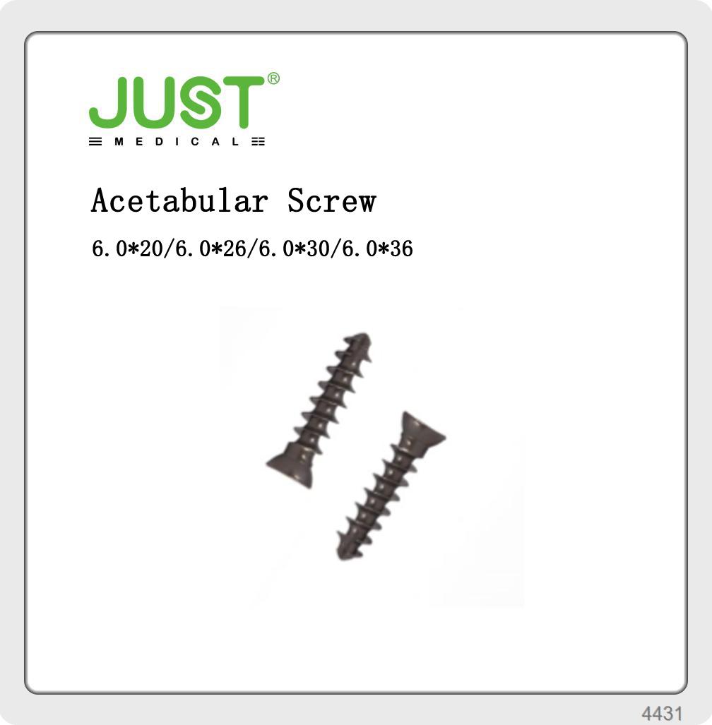 The acetabular screw hip implant titanium screw